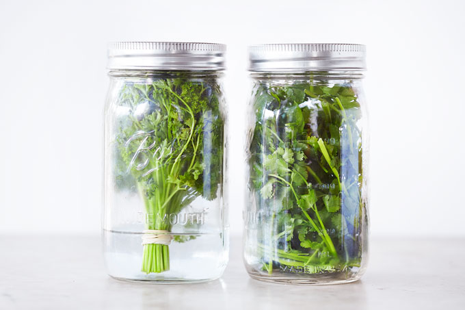 Leafy Herbs Best Served Fresh Like Parsley Basil Cilantro